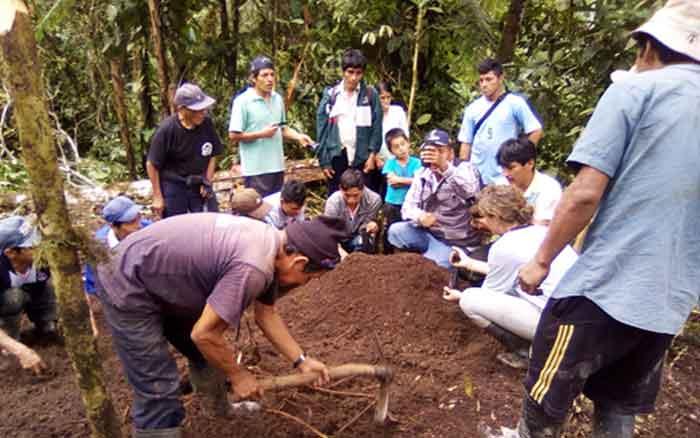 """Se inicia el programa forestal en la región Huánuco, en el marco del proyecto """"Protección del bosque para un desarrollo sostenible"""""""